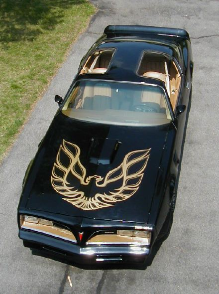 78 Best Images About Ulzzang On Pinterest: Joe's 77 Trans Am